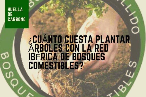 Plantar Arboles en la Red de Bosques