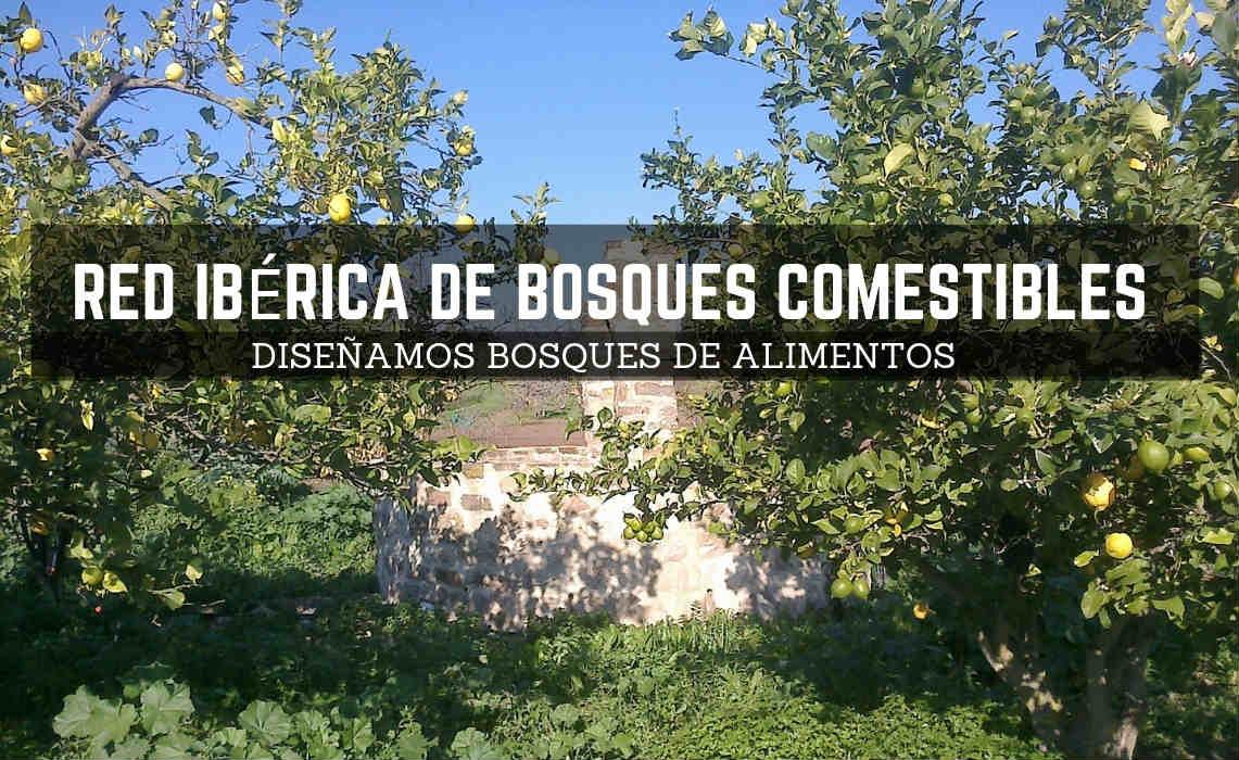 Formulario de Contacto de la Red Ibérica de Bosques Comestibles