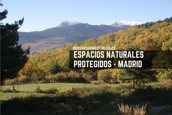 Madrid, Espacios Protegidos