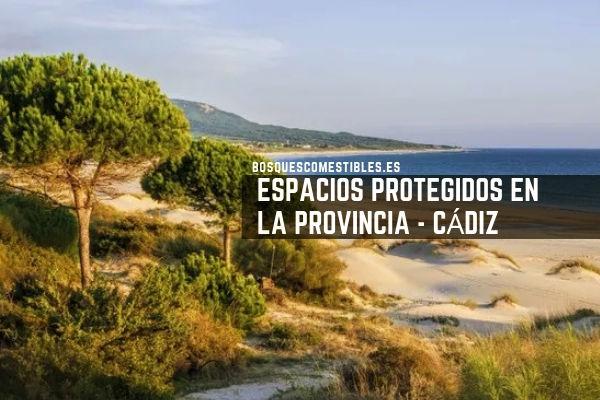 Espacios Protegido en Cádiz
