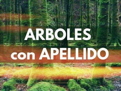 Arboles con Apellido