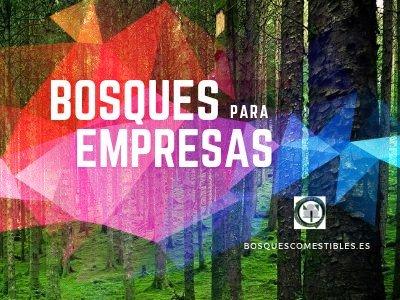 Bosques para Empresas