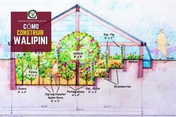 Cómo construir un Walipini
