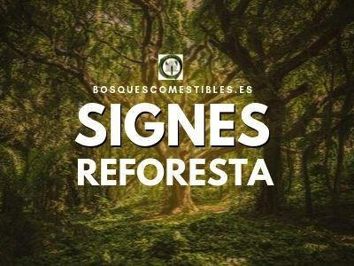 Signes Reforesta