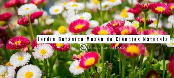 Barcelona, Museu de Ciències Naturals