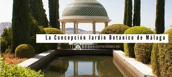 Concepción, Jardín Botánico