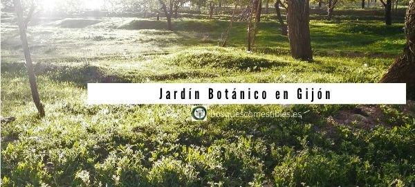 Gijón, jardín Botánico