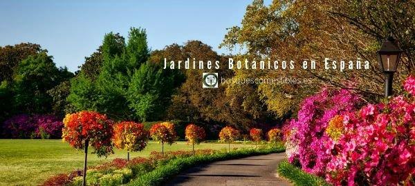 Jardines Botánicos, España
