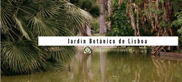 Lisboa, Jardín Botánico