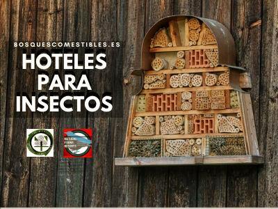 Hoteles para Insectos