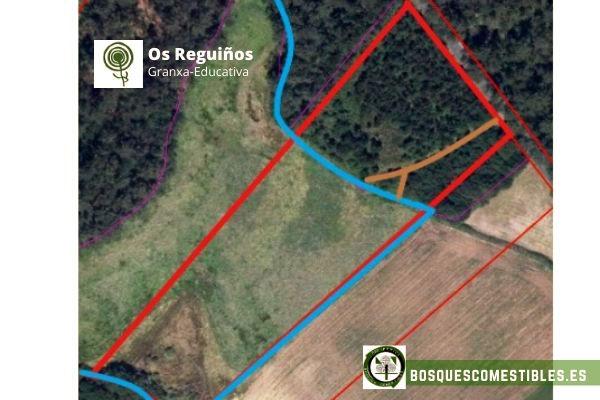 Bosque de Alimentos Galicia