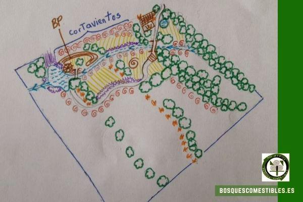 Diseño Bosque de Alimentos Piojal