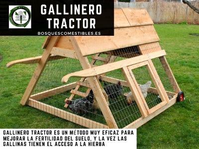 Gallinero Tractor