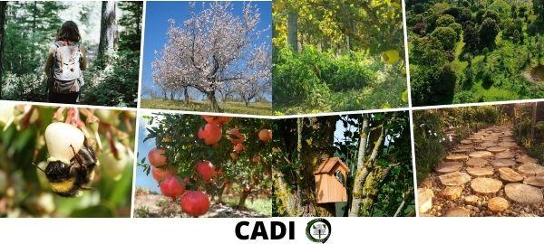 bosque comestible Cadi