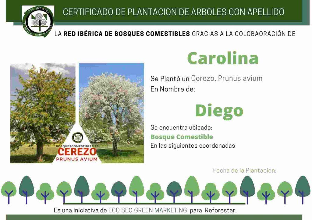 certificado de plantación