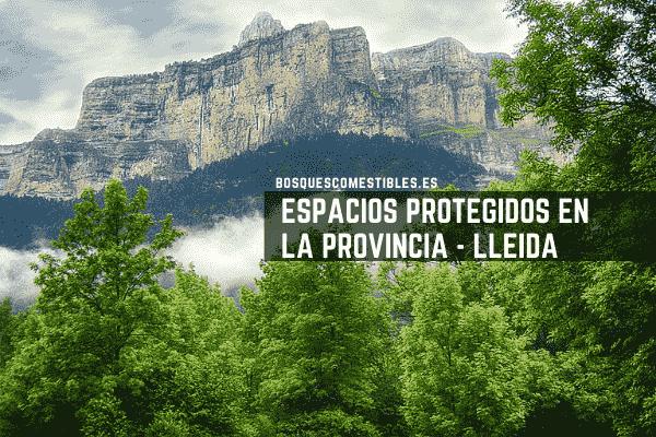 Pirineos, provincia de Lleida