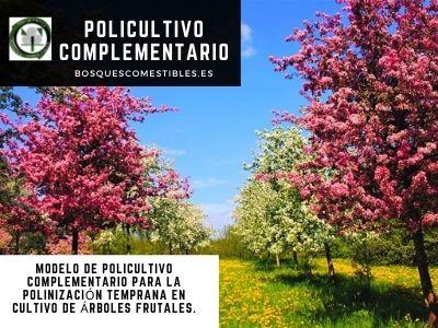Policultivo Complementario polinización Frutales